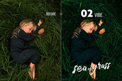 seaofgrass_preview_02