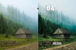 arcadia_preview_04