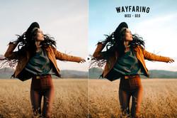 wayfaring_preview_03
