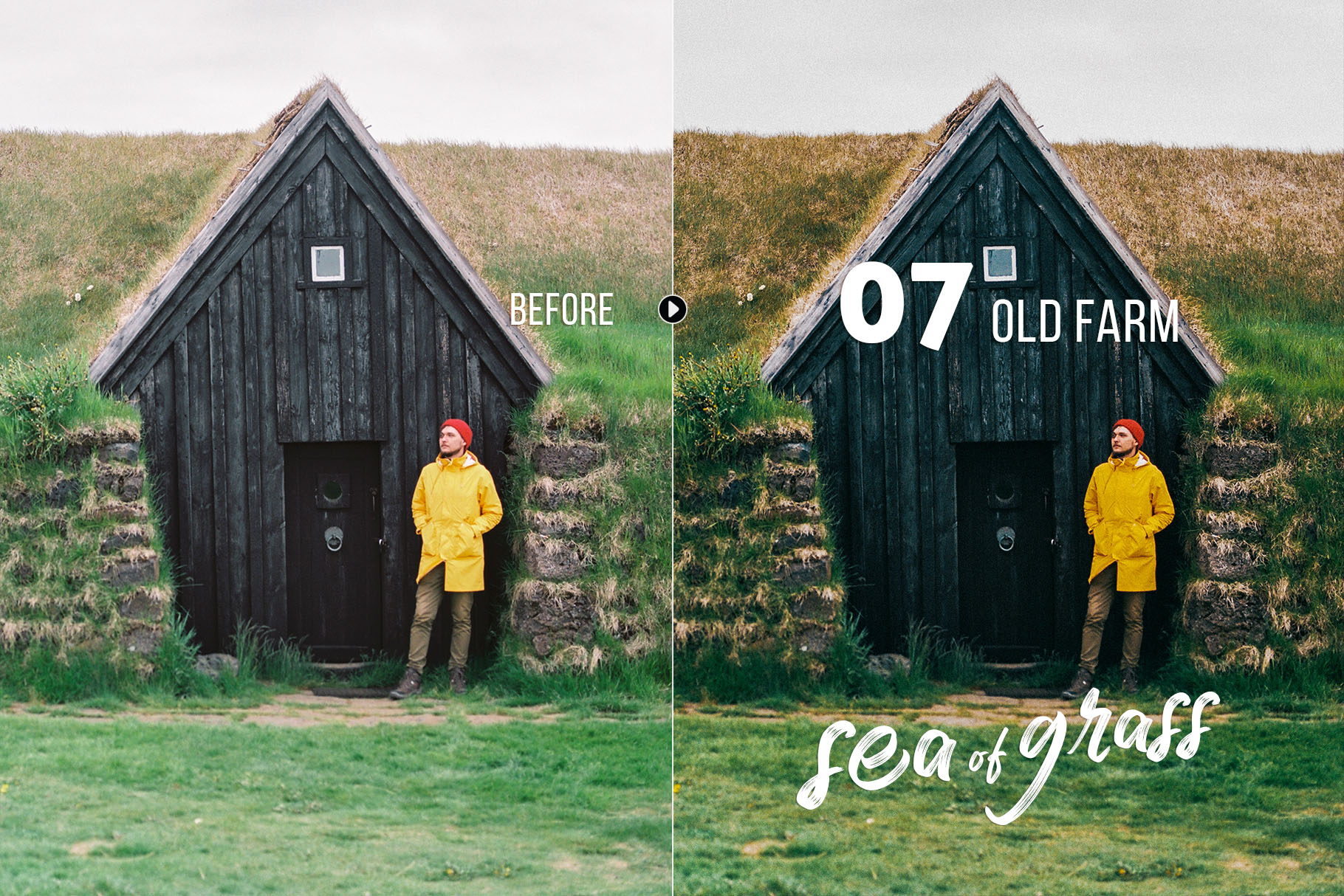 seaofgrass_preview_07