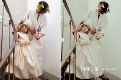 tangerine_preview_04