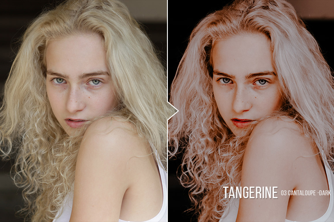 tangerine_preview_03