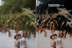 tangerine_preview_05