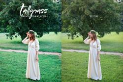 Tallgrass Photoshop Action - preview