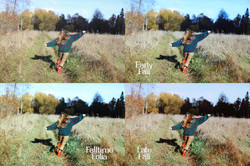 Falltime Photoshop Actions - preview
