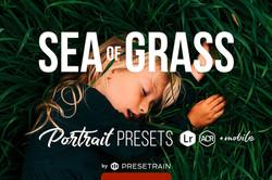 Sea of Grass Presets by Alexander Kuzmin