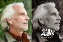 stark_preview_04