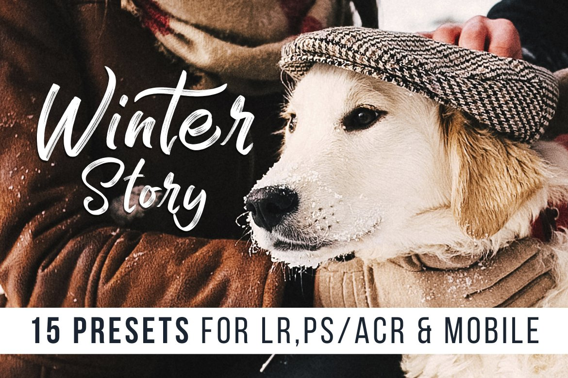 Winter Story presets by Presetrain for L
