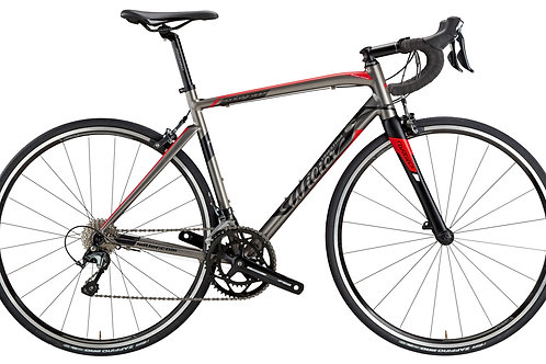 WILIER MONTEGRAPPA - SHIMANO FULL TIAGRA (S, M, L)