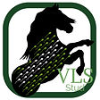 design by damien vls stud logo