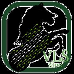 design by damien vls stud logo