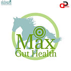 MAX GUT HEALTH LOGO PROPOSAL (DESIGN BY