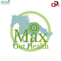 MAX GUT HEALTH LOGO PROPOSAL (DESIGN BY
