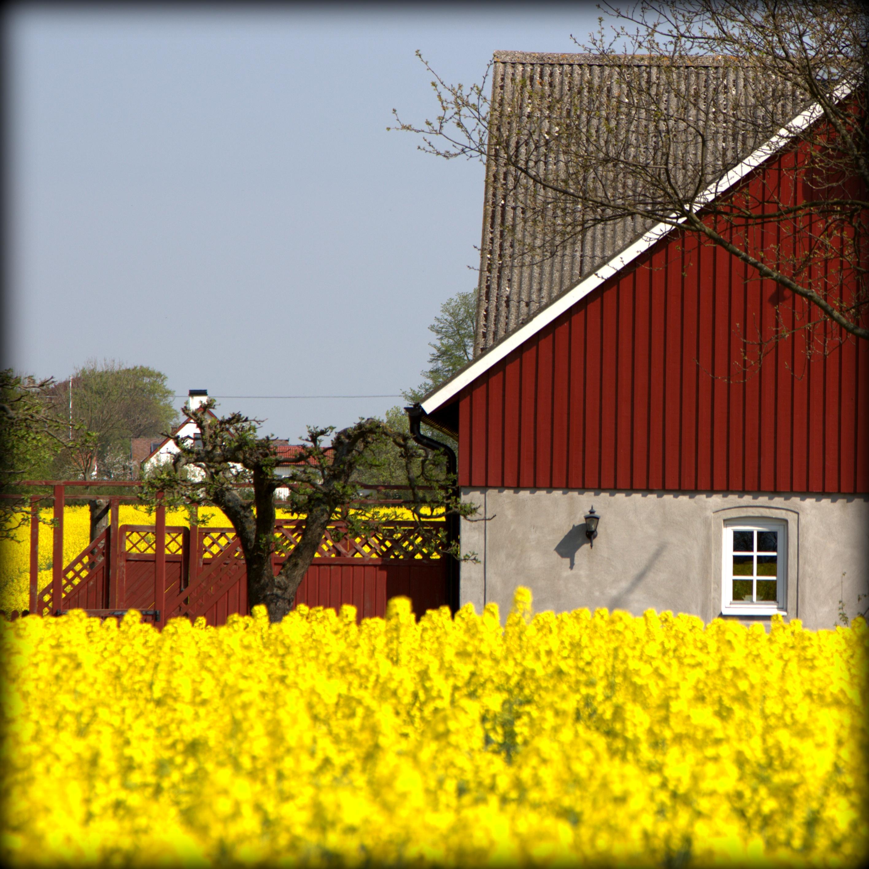 Lillehem_Gårdshotell_Sydkusten_Skåne_120