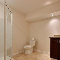 basement-bathroom-house-for-sale-limoges