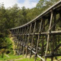 noojee-trestle-bridge_edited.jpg