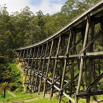 noojee-trestle-bridge_edited.jpg
