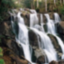 Toorongo-Falls.jpg