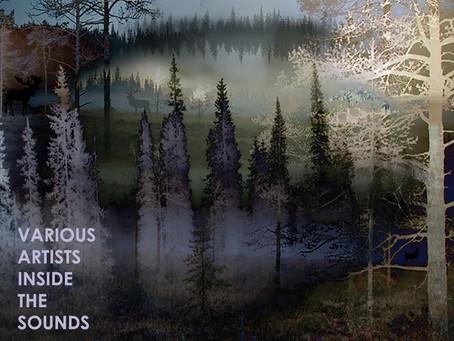 "New Various Artists 12"" soon on Elusive! :)"
