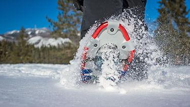 snowshoeing SHOE.jfif