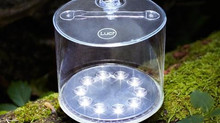 LUCI LIGHTS - these little beauties make great stocking stuffers!