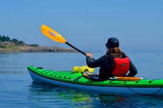 Kayak page.jpg
