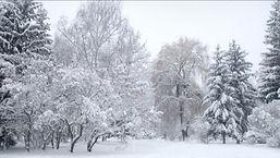 winter scene sunnidale sml.jpg