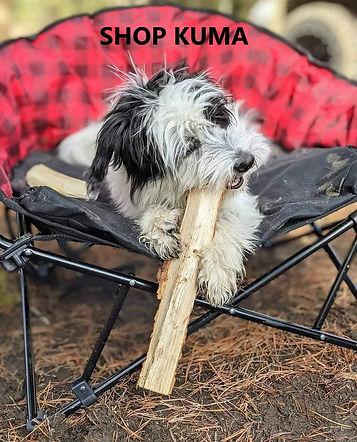 SHOP Kuma dog.jpg