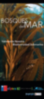 Pendon Bosques del Mar FINAL.jpg