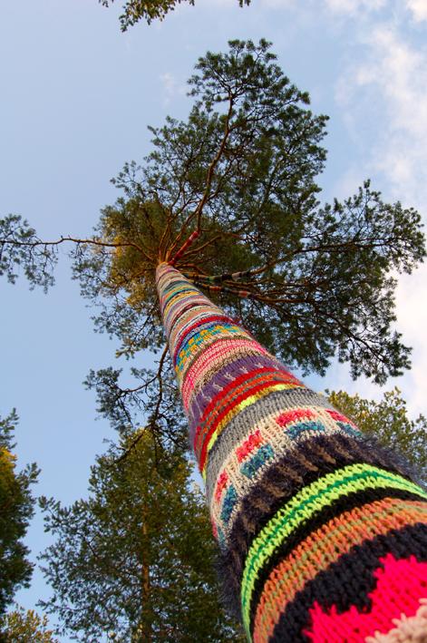 Maailman onnellisin puu