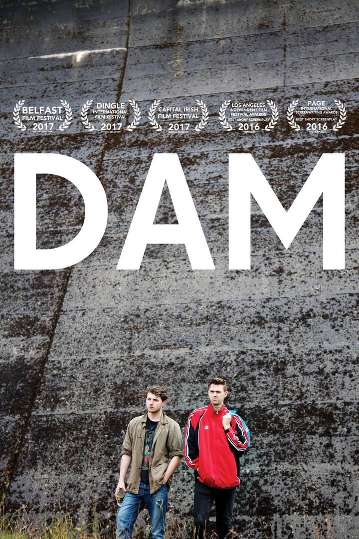 DAM (2017)