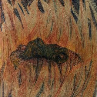 Brunnhilde's Fire