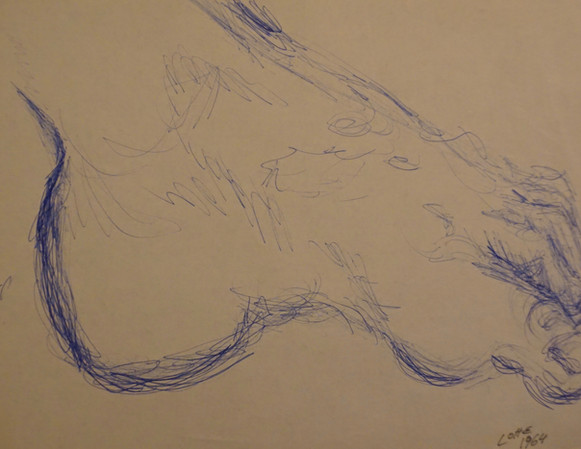 Study of the Foot