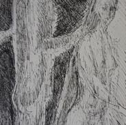 Tree Confidant