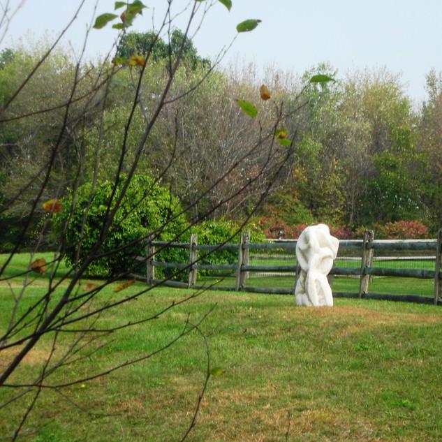 Gresser in the Garden 034.jpg