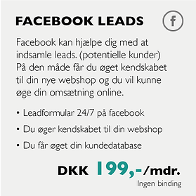 facebook leads-05.png