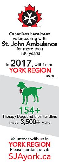 SJA 2017 - YR Statistics - THERAPY GRAPH