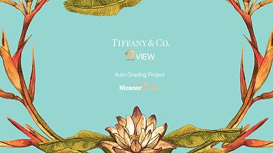 01 Splash Screen Tiffany 1245w 700h.png