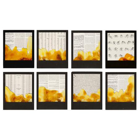 Salvaged Polaroids | Series One
