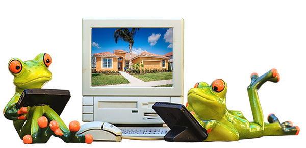Frogs by computer.png