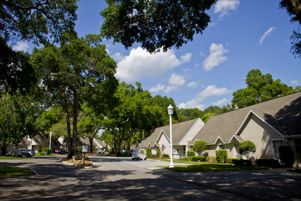 Beautiful tree lined streets at John Knox Village, a retirement center Interiors for Seniors services.