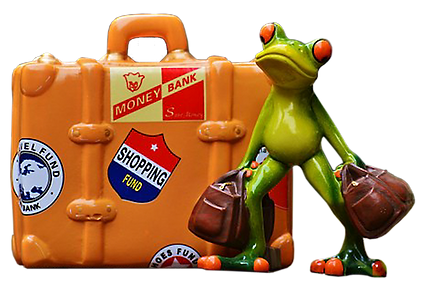 Frog by Large Suitcase.png
