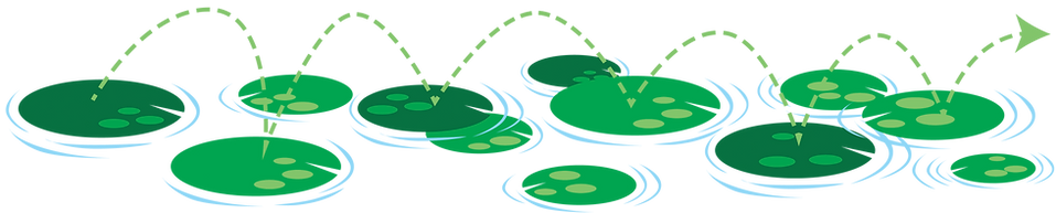 Leaping Forward Lily Pads for banner.png