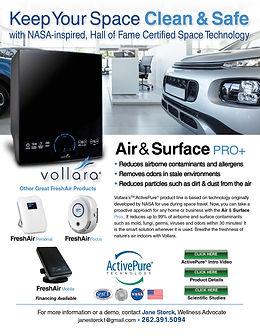 Vollara-AutoDealer-Jane Storck flyer.jpg