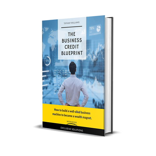 The Business Credit Blueprint