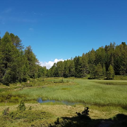 JDQ-PFV-Worblaufen Moosalp 14.-15.07.2018-51.1.JPG