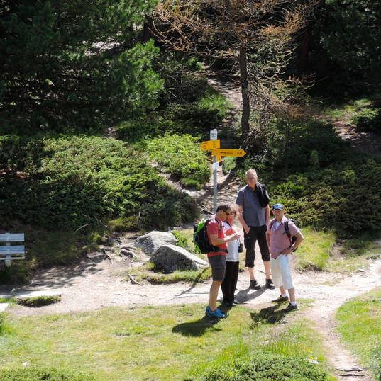 JDQ-PFV-Worblaufen Moosalp 14.-15.07.2018-49.jpg