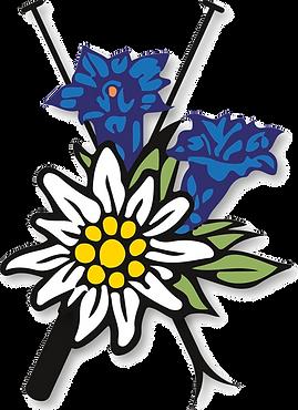 Logo farbig mit Schatten.png