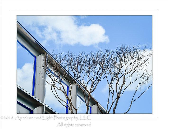 Glassless Windows