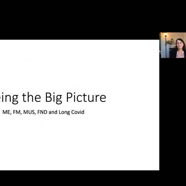 Seeing the big picture: ME, Fibromyalgia, MUS, FND and Long Covid - Dr Diane O'Leary